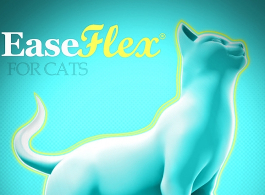 Protected: EASE-FLEX